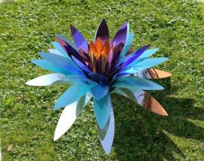 Chelita Zuckermann - Fiore di Cactus azzurra e viola