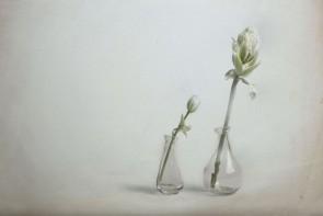 Michele Ranzani - Fleurs, studio I