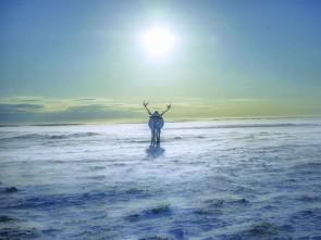 Massimo Bietti - Reinder Alone